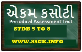 STD 5 TO 8 ENGLISH UNIT TEST